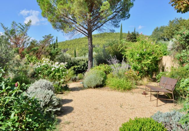 Villa in Cotignac - Arts & Flores : Quiet holidays with private pool and WIFI